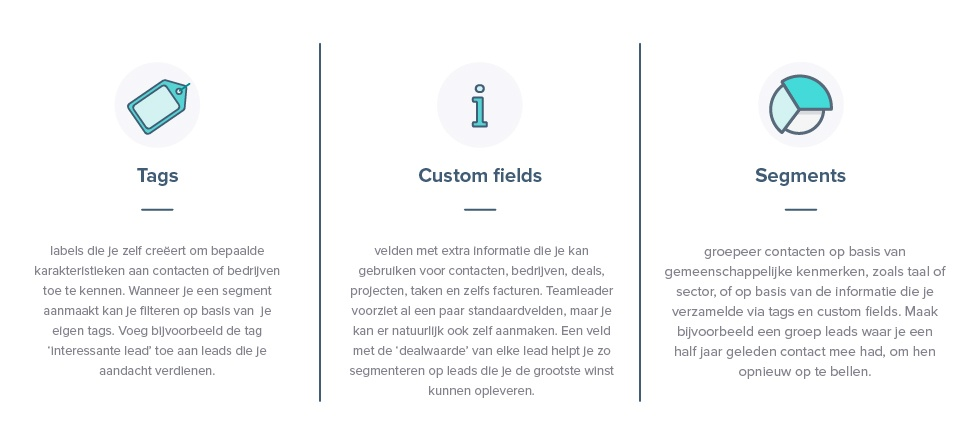 leadkwalificatie teamleader tags custom field segmenten