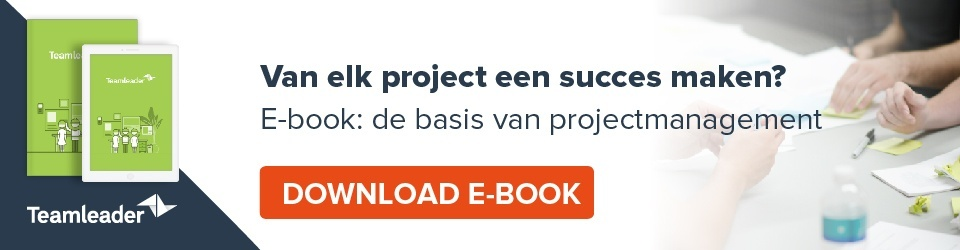 Van elk project een succes maken? Download je gratis e-book: de basis van projectmanagement.